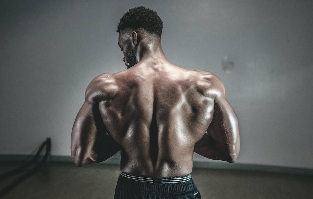 CBD for Muscle Growth